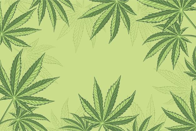where to buy cannabis in edmonton