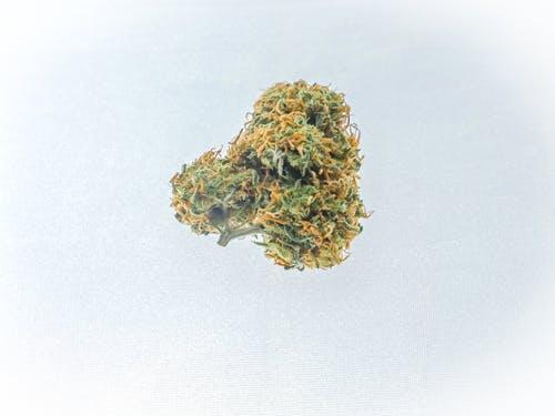 Where can I Buy Marijuana?